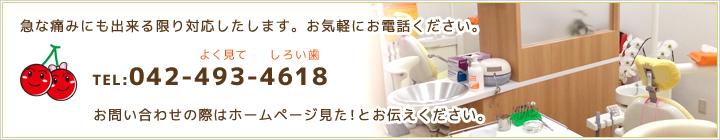 清瀬さくらんぼ歯科042-493-4618